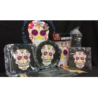 Day of the Dead Halloween or Party Decorations Party Supplies Package Plates, Napkins, Balloons