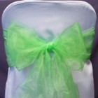 Organza Fabric Chair Bow Sash Apple Green