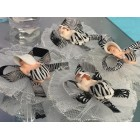 12 Zebra Capias or Corsages Party Favor Cake Decorations