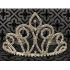 Elegant Rhinestone Princess Tiara Crown Weddings Bridal Sweet 16 Birthday Mis Quince Años
