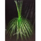 28″ Glitter Laser Palm Tree Centerpiece with Base Green Centerpiece